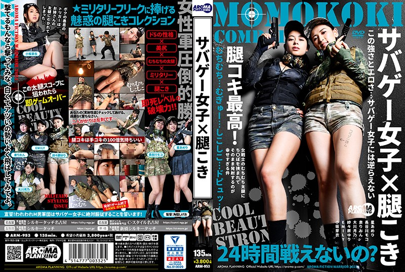 ARM-953 Photo Cover