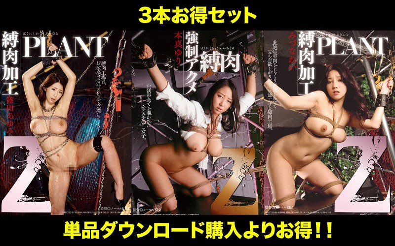 STDDT-076 Photo Cover